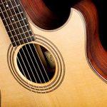 Акустические гитары Adams